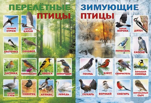 Праздник весны и птиц